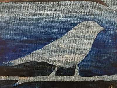 Kidcreate Studio - Alexandria. Birds on Canvas (5-12 Years)